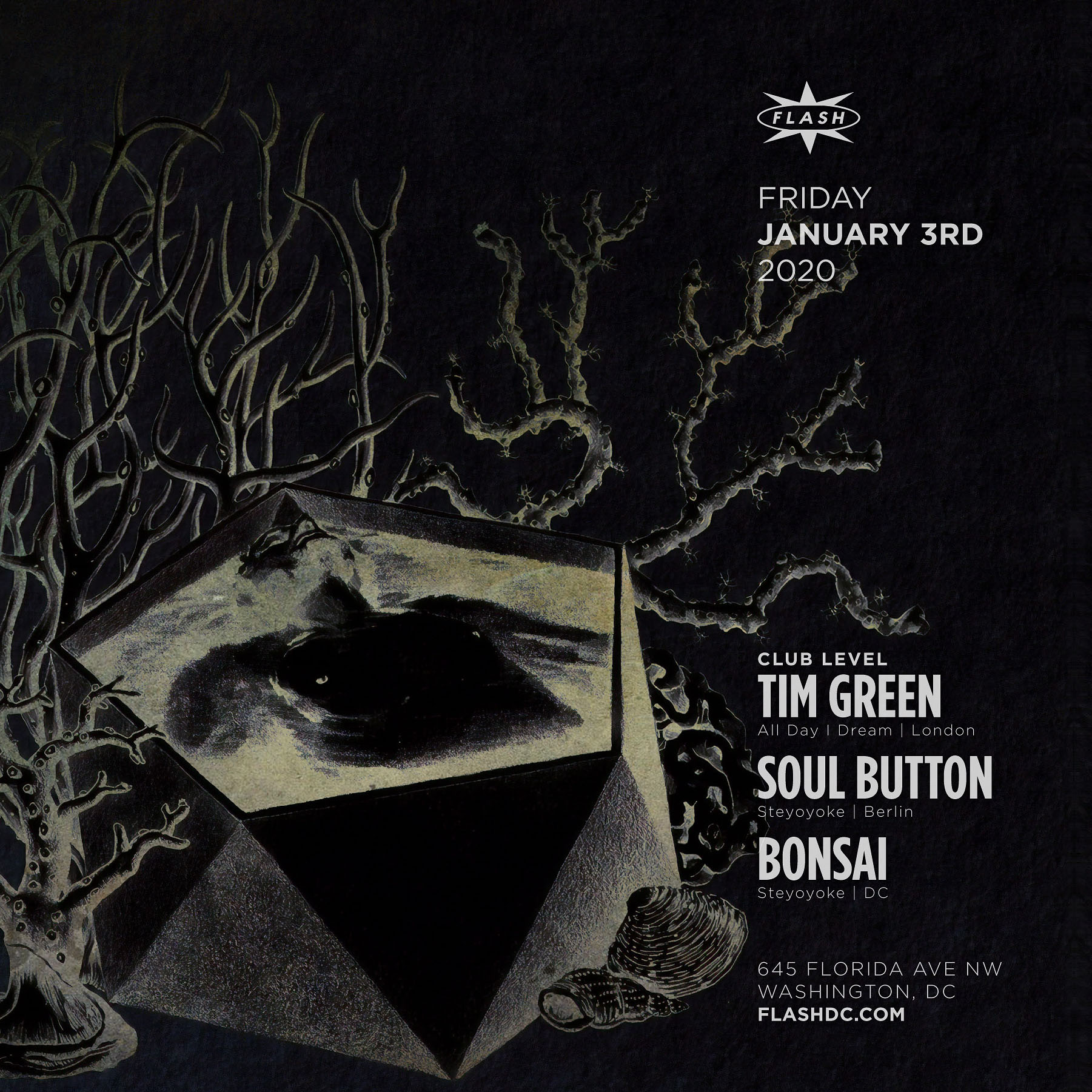 Tim Green - Soul Button - Bonsai event thumbnail